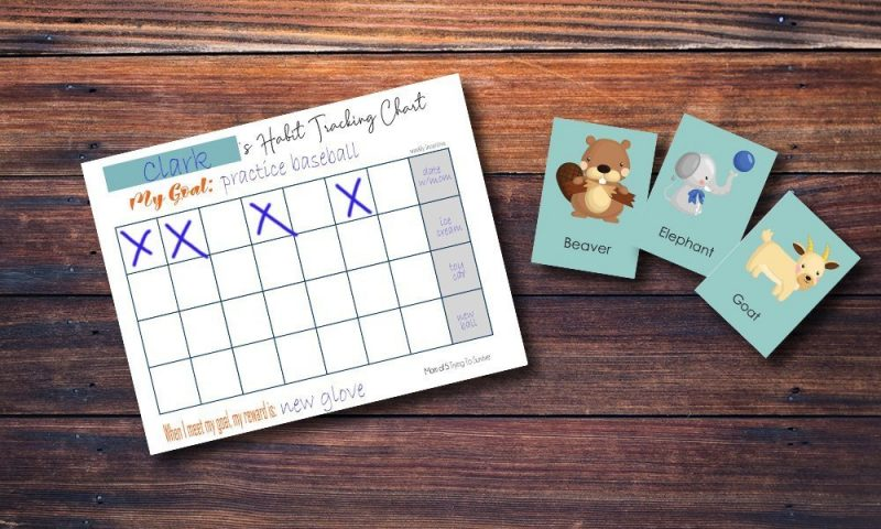 habit tracking chart and animal guessing game